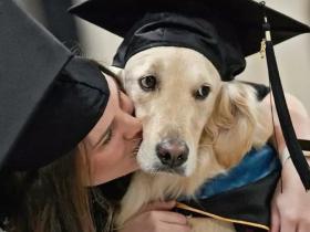 服务犬每天陪瘫痪主人上课,4年来在课堂上没叫一声!