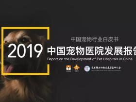 中国宠物诊疗领域的首份公开报告:《2019中国宠物医院发展报告》