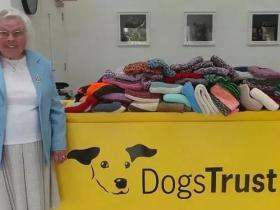 3年时间,这位89岁的英国老人,为流浪狗织了450件毛衣