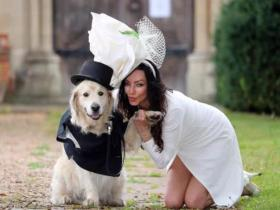 约会220次都失败决定嫁给爱犬,英国女模特上电视直播婚礼