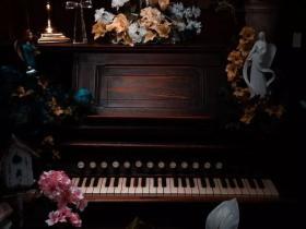中国几千万人在学钢琴,到底为了什么?