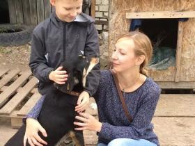 这个9岁小男孩,靠画画救了上百只流浪狗!