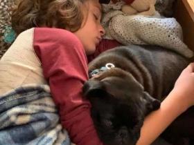 爱犬被偷后,小男孩花了6年时间寻找它,而奇迹真的出现了