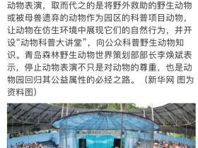 青岛森林野生动物世界宣布:永久停止动物表演