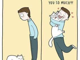 为什么养猫后的猛男,都变成了铁憨憨?
