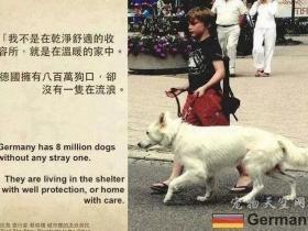 你知道,德国为什么没有流浪狗吗?