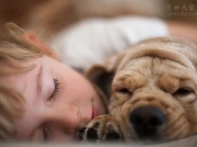想养狗但是家里有小孩,害怕有细菌,怎么办?