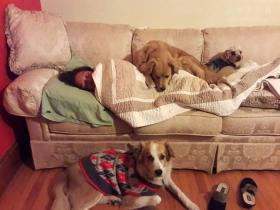 被狗狗感动的那一刻,这就是很多人喜欢养狗的原因(一)