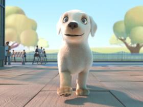 导盲犬《Pip》的励志故事,虽然笨笨的,却被它感动哭!