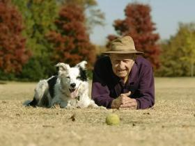 聪明的狗狗去世:能听懂1022个英语单词,汪界智商的巅峰存在!