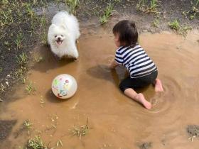 前一天刚给狗狗洗完澡,结果就...这是洗一送二服务?
