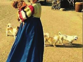 福州女子带宠物全国旅游 怕狗狗孤单辞职创业