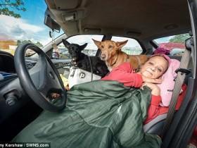 英国女教师为了不抛弃两只狗 在车里生活了4个月