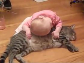 淡定猫咪任由小主人欺负