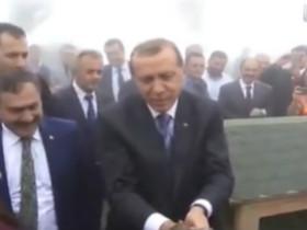 总统在放生仪式上被鸟袭击