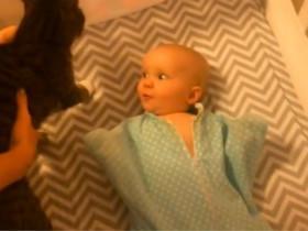 婴儿第一次见到猫咪的反应