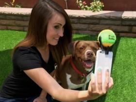 拍照时让狗狗露出微笑 一种超简单的自拍技巧