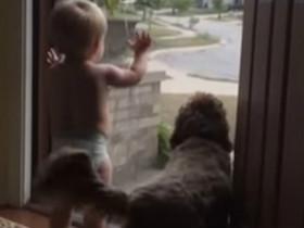 萌娃与狗共同迎接爸爸回家