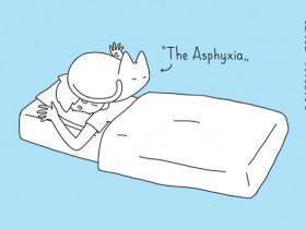 喵星人最喜欢和主人一起睡觉的10种姿势