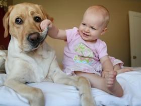 孩子与宠物在一起的照片 这就是养宠物的原因(50张)