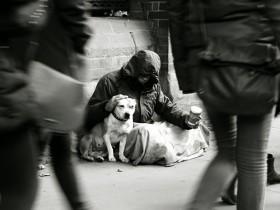 狗突然朝主人疯狂吠叫 故事的最后让人的心都碎了