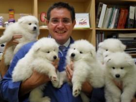 当一个宠物医生也好处 至少可以和各种宠物合照(26张)