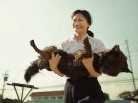 泰国超感人的一个广告 女孩和一只狗狗的故事