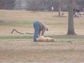 狗狗耍赖皮不想回家