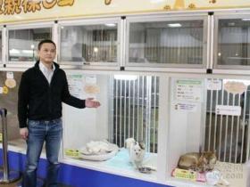 宠物店装修必须要注意3个的地方:排污、通风和隔音