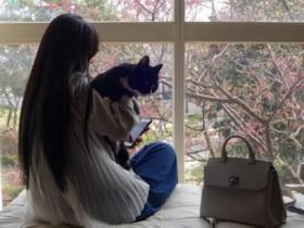 郭碧婷抱着猫咪赏樱 长发及腰背影很唯美