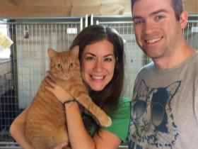 夫妻开车行驶了3500公里 只为了领养一只没见过的猫咪