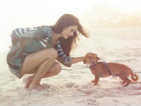分享一些养狗的乐趣,至于养不养狗,你们自己做决定就好!