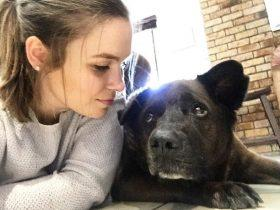国外女子送狗狗最后一程:离别,总是一件让人心碎的事情
