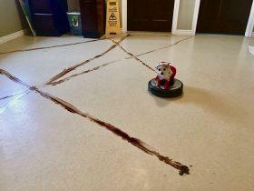 如果家中有狗狗和智能扫地机器人 一定要避免发生这种情况