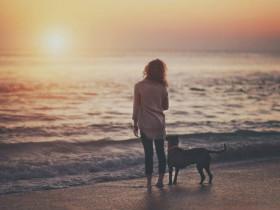世界上最长情的告白不是陪伴,而是长达百年的互怼
