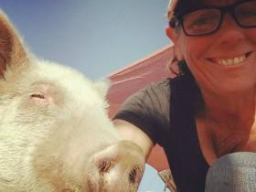 浑身兽疥癣的小猪让人头皮发麻,救助站里发生惊人转变