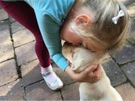 小女孩心爱的狗狗被偷了,她很心碎,小偷又悄悄地将狗狗归还