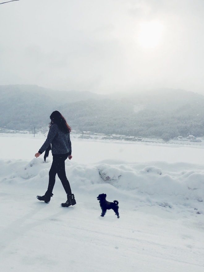 """与狗一起""""旅行"""":把狗用PS加入我的旅行照片中"""