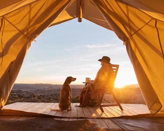 带着自己的宠物狗去旅游,是一种什么体验?