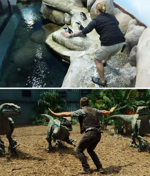 动物饲养员开启逗比模式:模仿《侏罗纪世界》