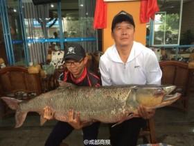 父子联手钓起百斤鳡鱼 身长1.63米激战近3小时