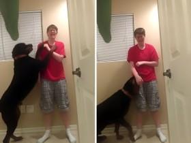 狗狗阻止患阿斯伯格综合症主人的暴力自虐
