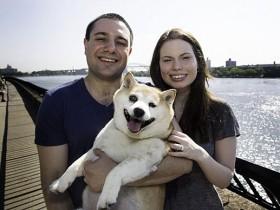 柴犬Cinnamon的微笑:世界上最幸福的狗狗