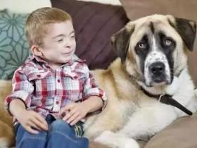 """苦命相连的孩子和狗狗 在一起""""负负得正"""""""