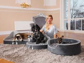 德国公主将亲临第18届亚洲宠物展