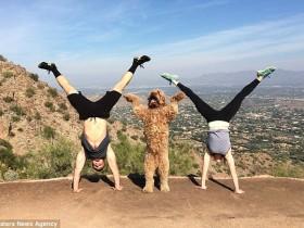 妻子和狗狗陪男子做减肥锻炼 画面温馨得虐死单身狗