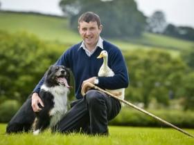英国农夫的一只边牧犬不牧羊 专门来训练鸭子