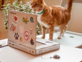 猫咪专用笔记本电脑 有了这个再也不担心猫咪打扰你上网