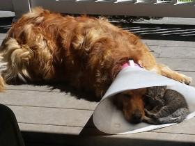 人生最值得庆幸的是:当你处于低谷的时候,有朋友陪着你