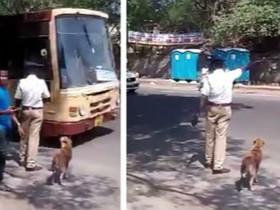 印度交警帮助狗狗过马路 很有爱